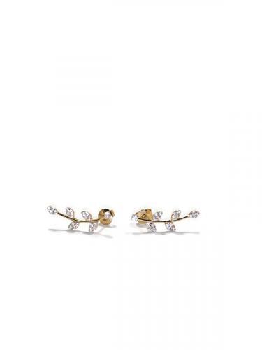 Kultakorvakorut köynnös